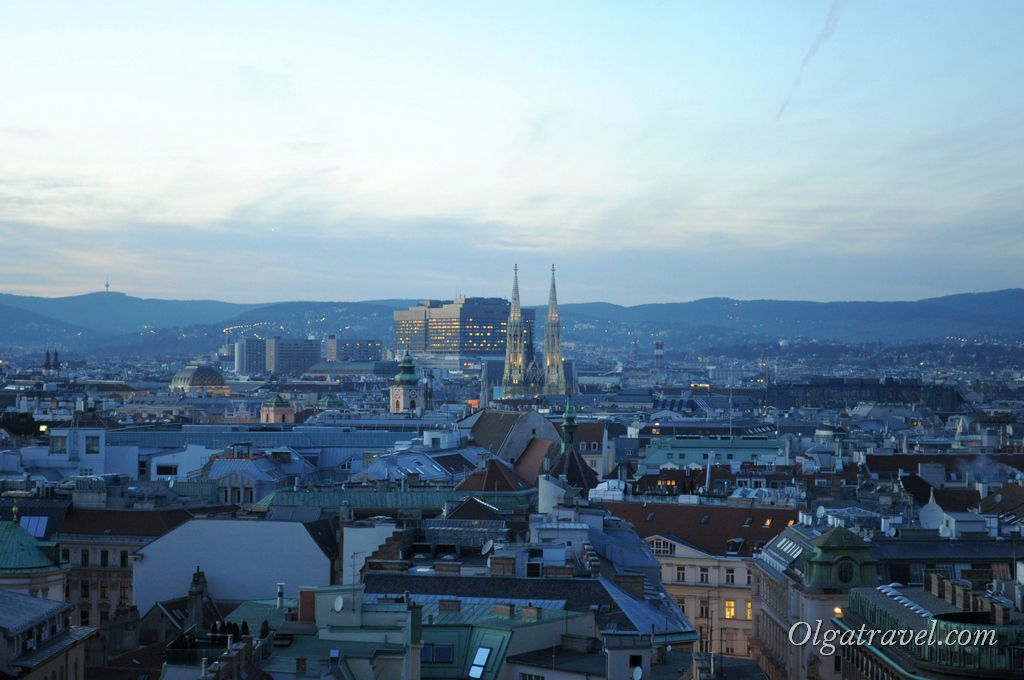 Vienna_St._Stephan_cathedral_18