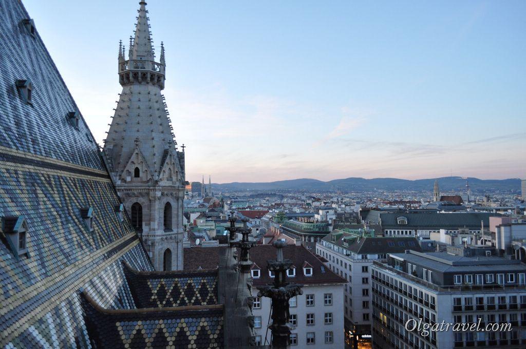 Вид с Северной башни собора Святого Стефана