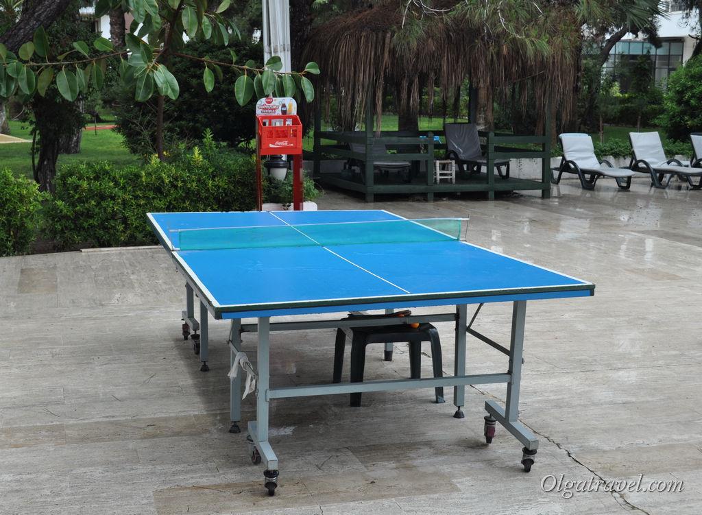 Единственный стол для настольного тенниса