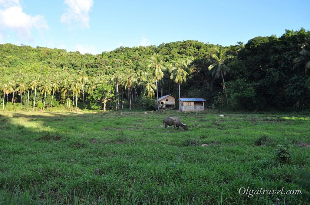 Эль Нидо Филиппины