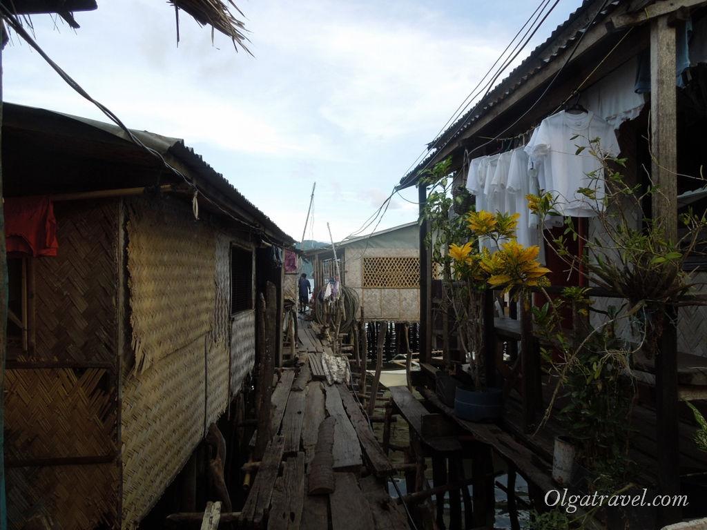 Филиппинские трущебы