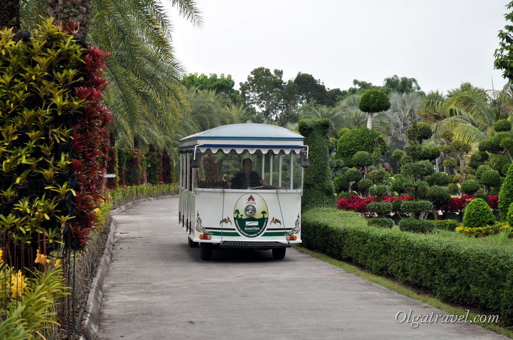 Вот на таком автобусе можно прокатиться по парку