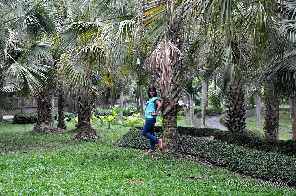 Botanical_Garden_Horizon_Village_24