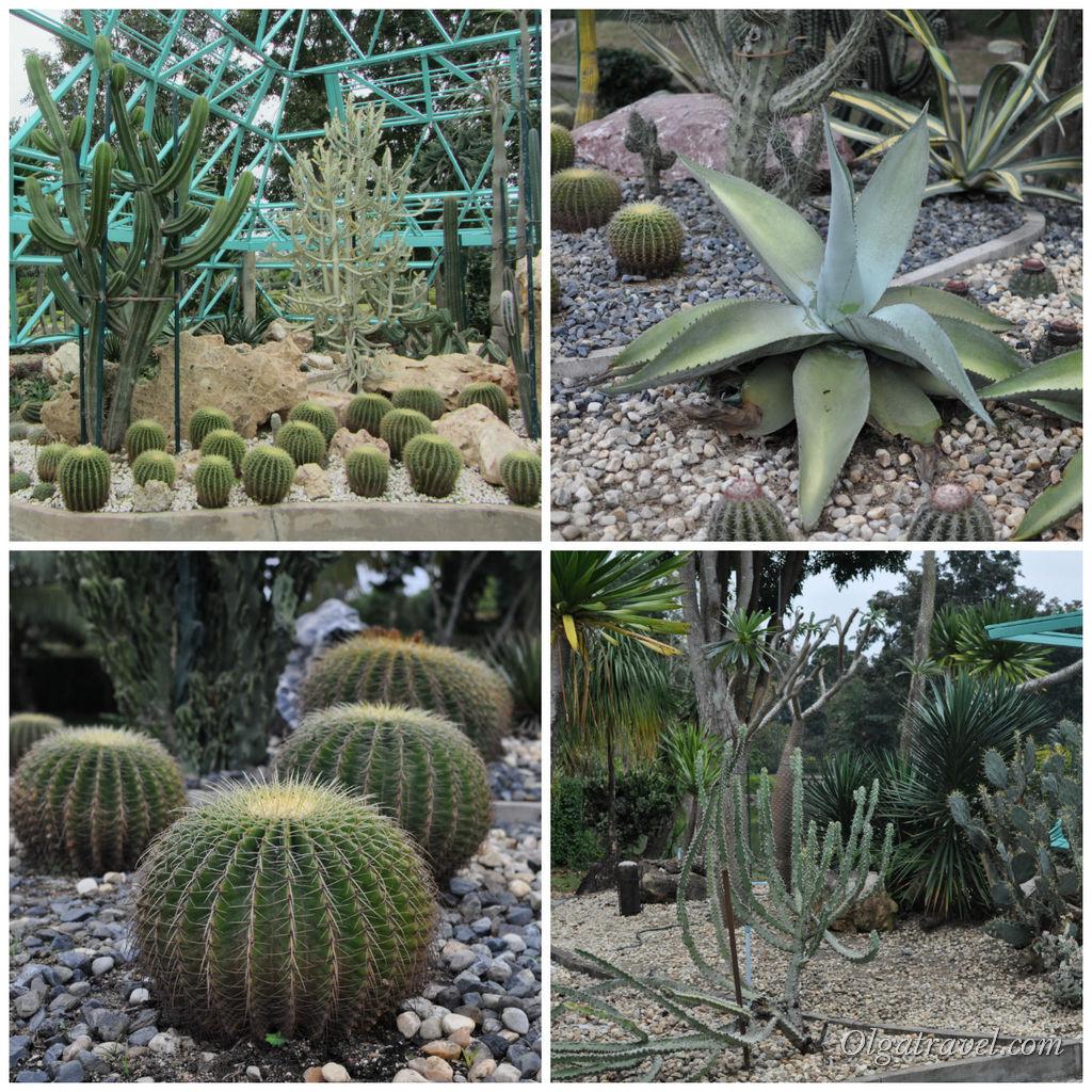 Botanical_Garden_Horizon_Village_56