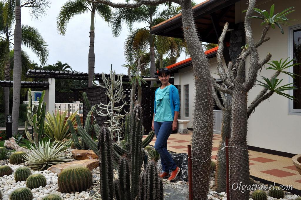 Botanical_Garden_Horizon_Village_9