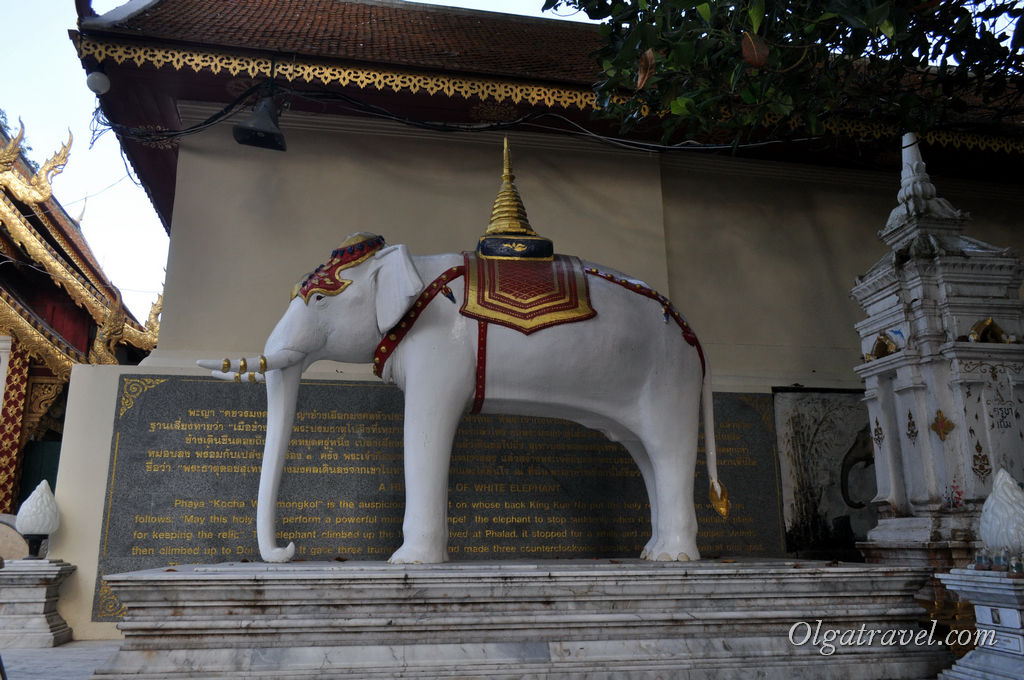 Памятник белому слонику, который нес священную реликвию и выбрал место для храма Дой Сутхеп