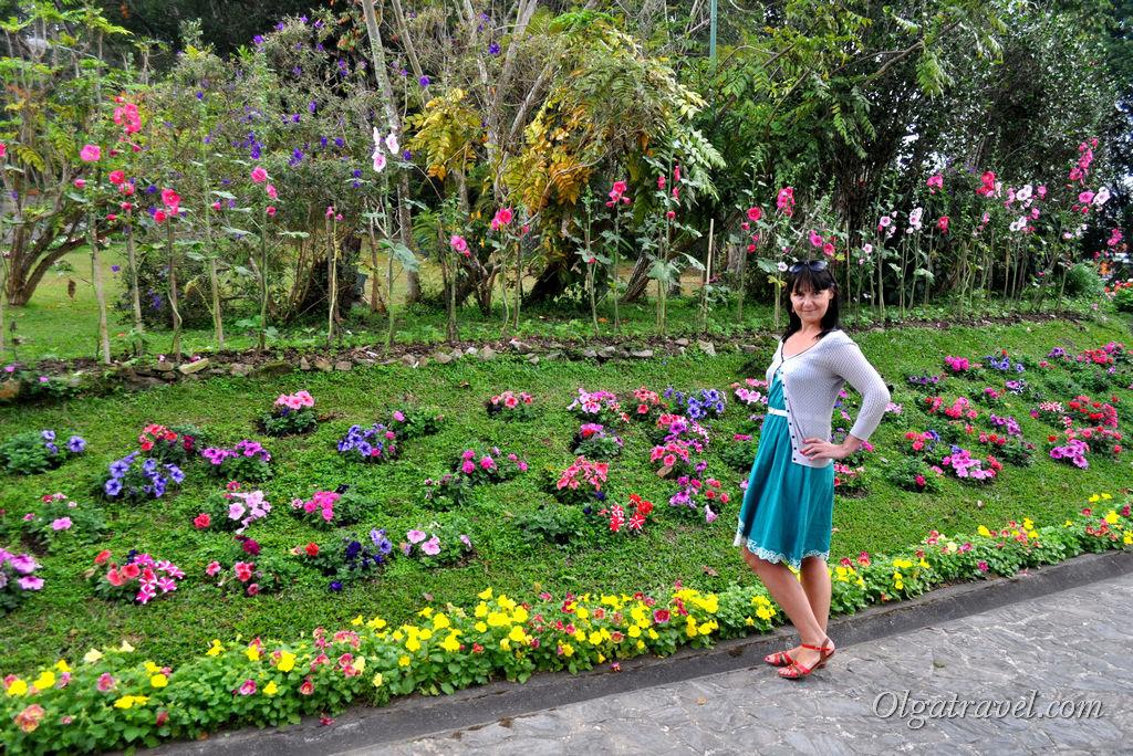 Chiang_Mai_Bhubing_palace_15