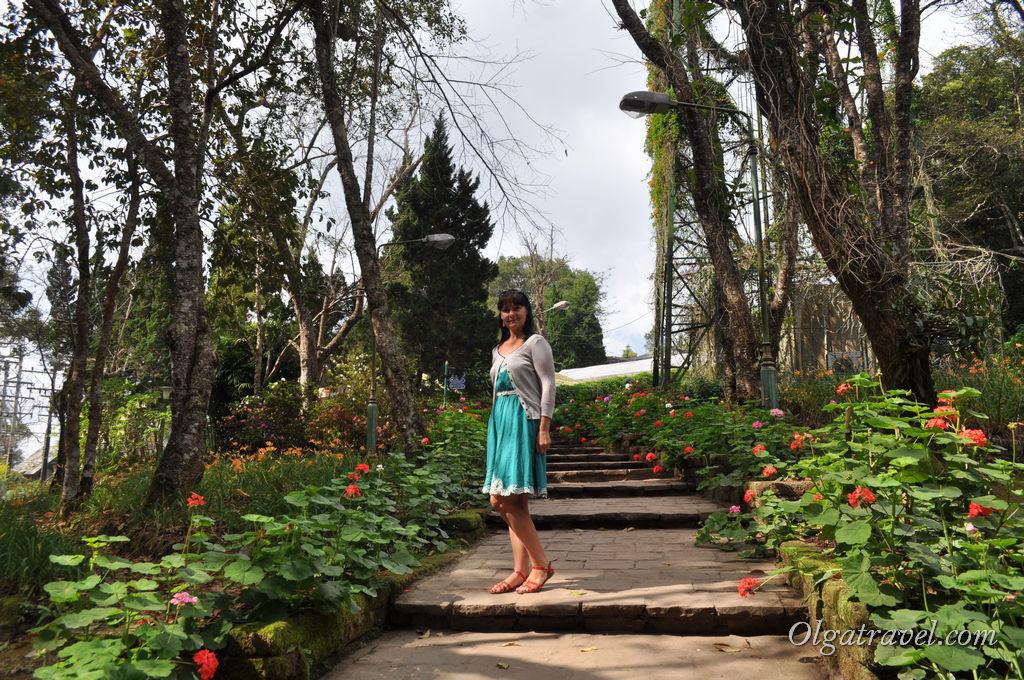 Chiang_Mai_Bhubing_palace_44
