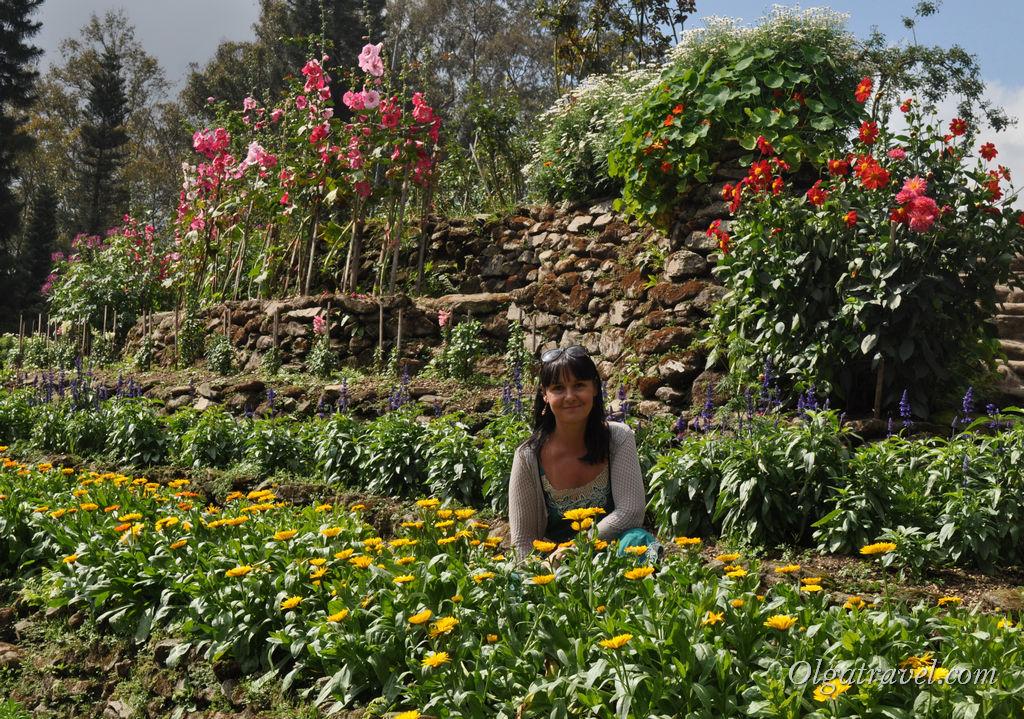 Chiang_Mai_Bhubing_palace_45