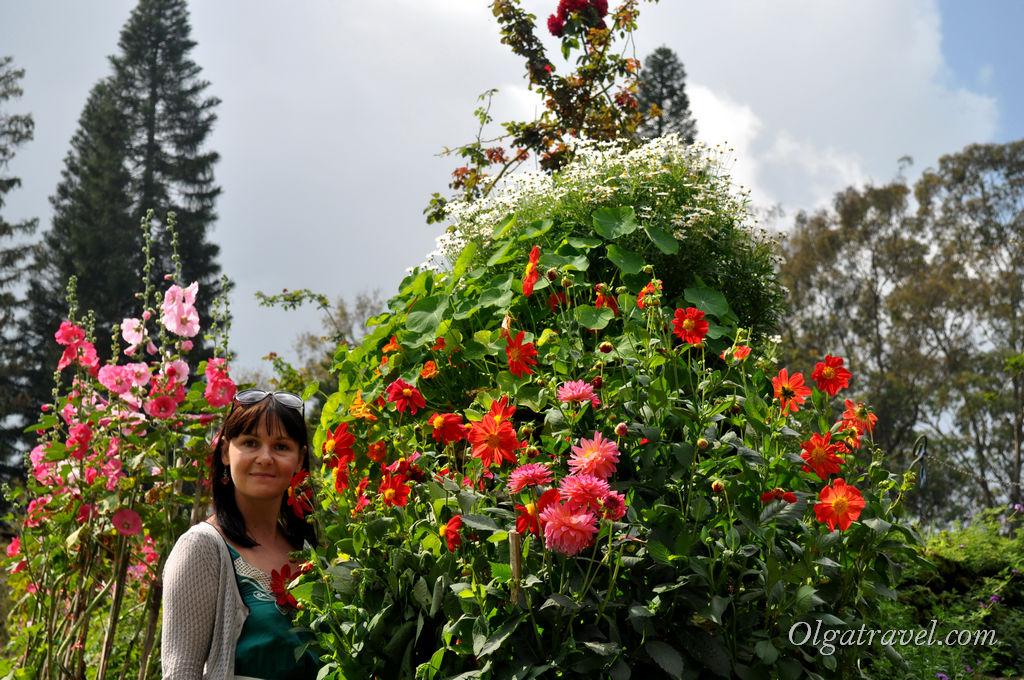 Chiang_Mai_Bhubing_palace_46