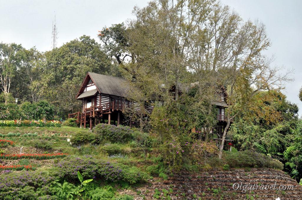 Эвкалиптовый домик