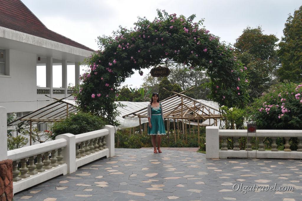Еще один розарий - сад Suan Suwaree, но розы в нем еще не распустились. Похоже, готовятся к приезду короля :)
