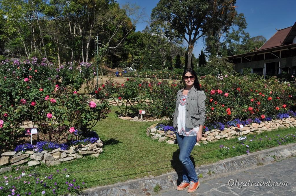 Chiang_Mai_Bhubing_palace_77