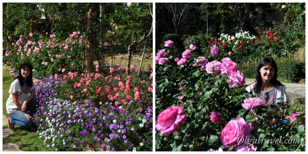 Chiang_Mai_Bhubing_palace_86