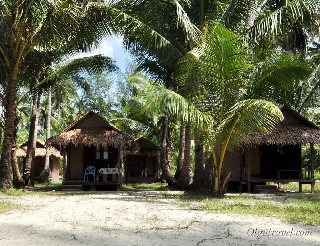 Совсем простенькие домики Tiger Hut за 300 бат в сутки. Зато на самом пляже!
