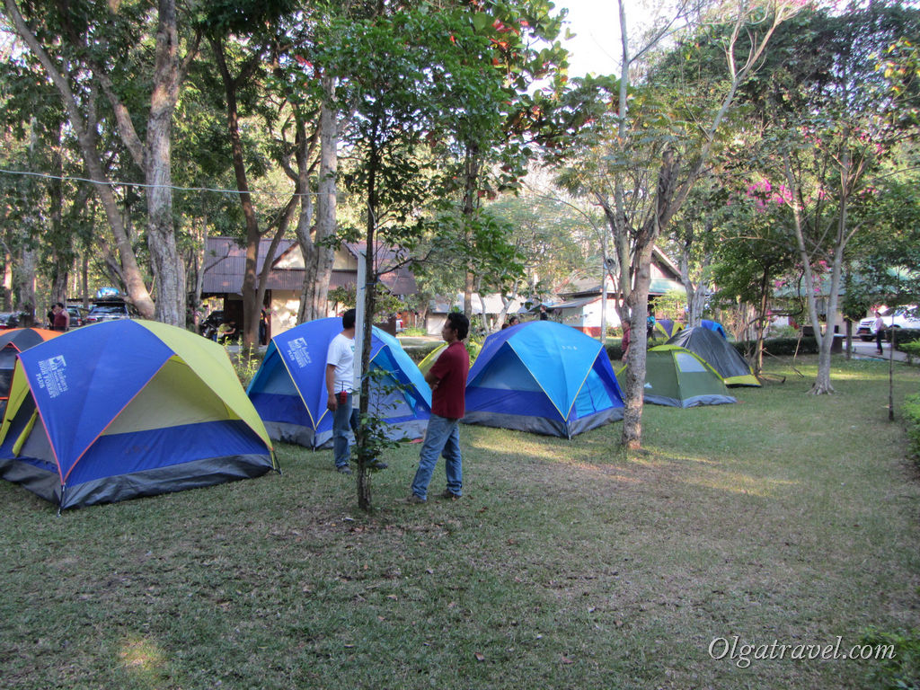 Местные приезжают в парк с палатками на выходные