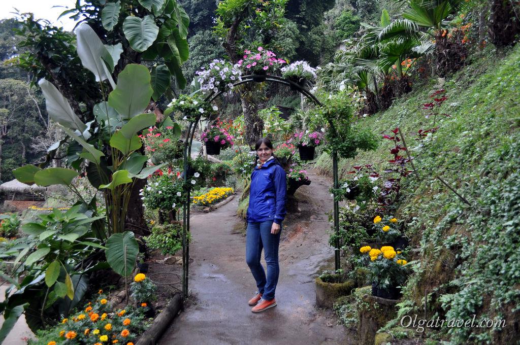 Doi_Pui_Hmong_Village_10