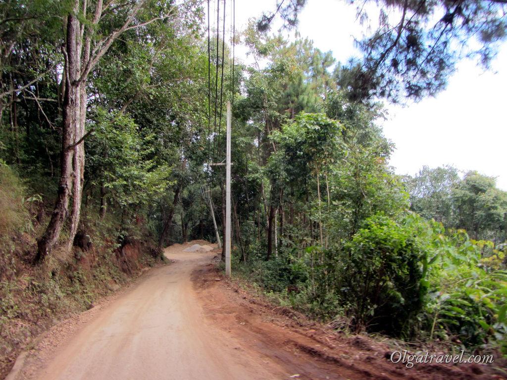 дорога на горе Doi Pui