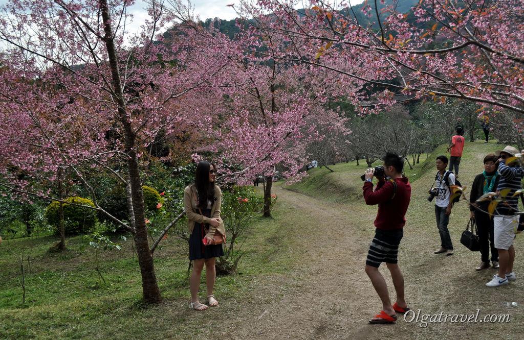 Тайцы - большие любители фотографироваться :)