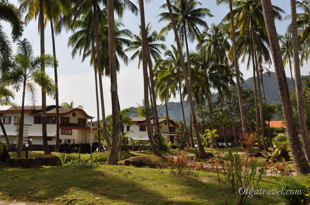 Домики- лодки в пальмовых джунглях