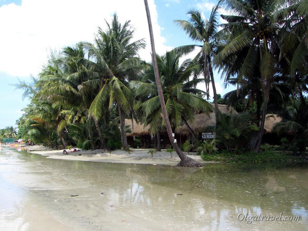 Или все же прилив? Что за болото возле отеля KP Resort?