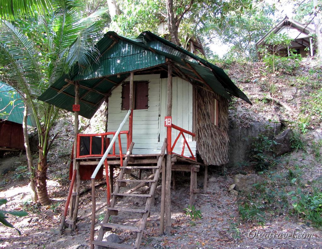 Домики Tree House у самого моря от 100 бат в сутки