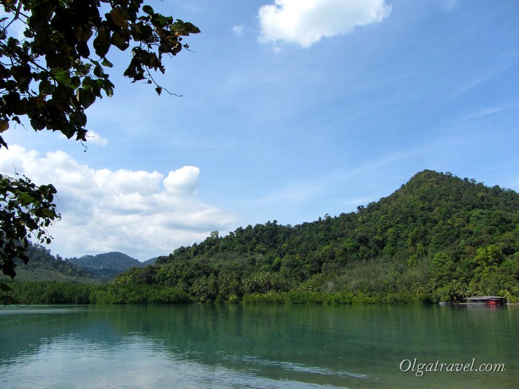 Озеро с мангровыми загорслями