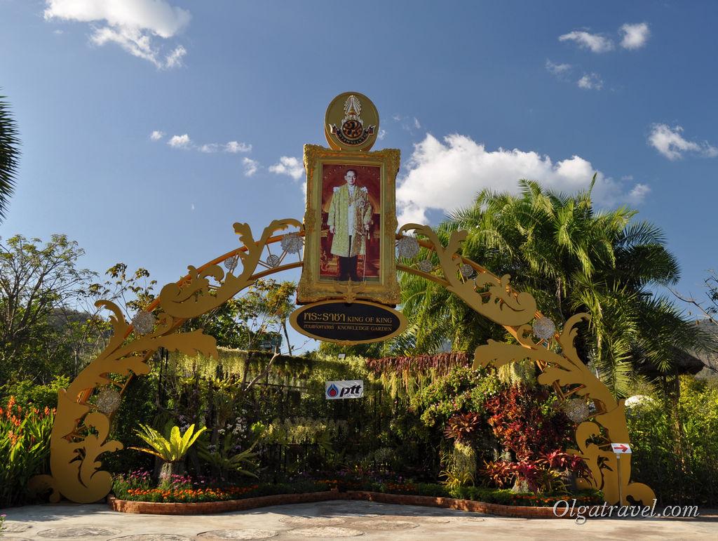 Тайцы очень любят и почитают своего короля. Его портреты можно наблюдать  везде: на улицах городов, парках, кафе