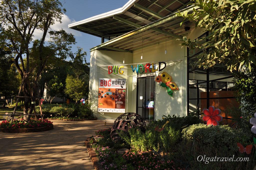 Музей-павильон с разными засушенными жуками и бабочками
