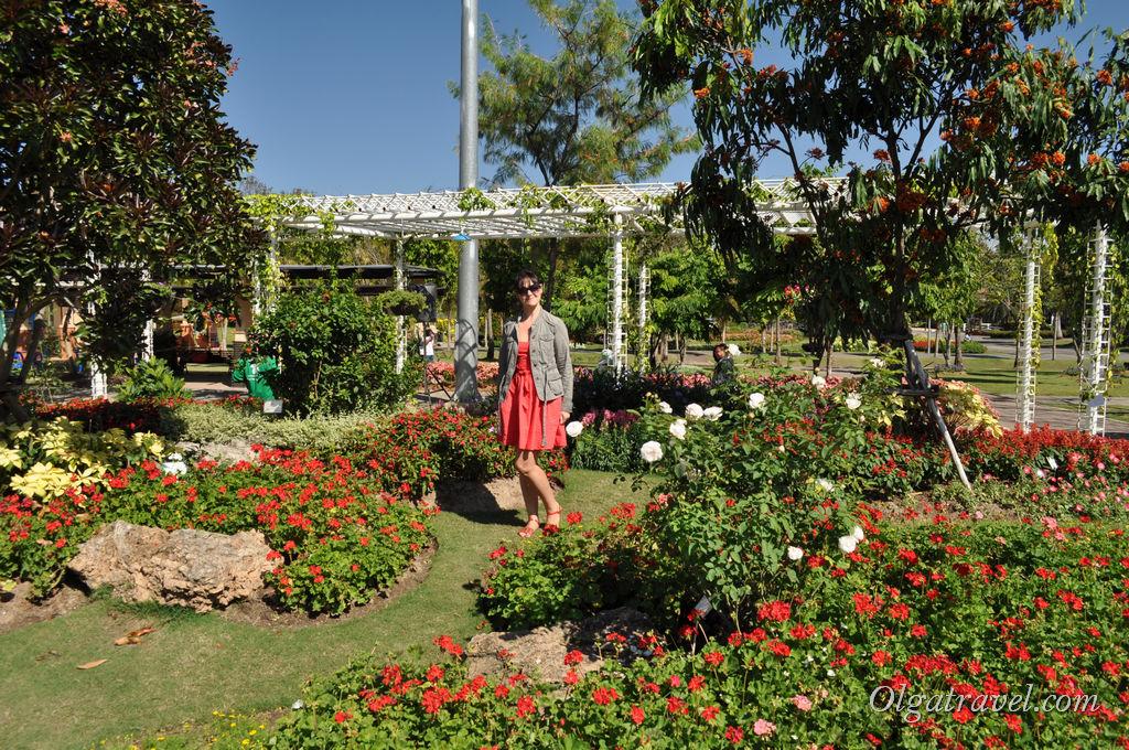 На территории парка цветов Роялд Флора