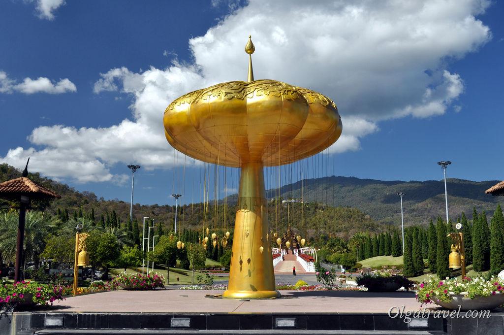 Вроде золотой гриб, а оказалось, что это не гриб, а какое-то дерево, под которым надо медитировать!