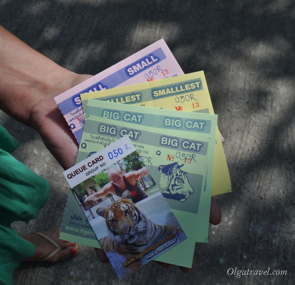 Купили билеты к кошкам :) Наш номер очереди R050