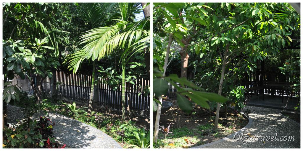 Зеленый дворик с беседкой