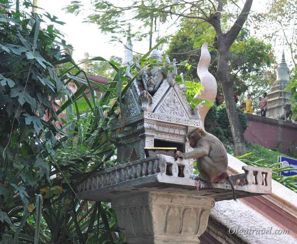 Phnom_Penh_30