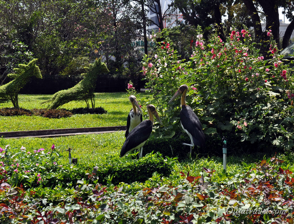 Зоопарк Сайгон