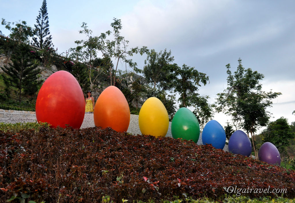 100 яиц