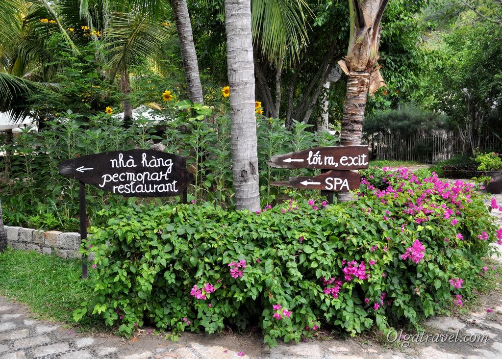 I Resort где покушать