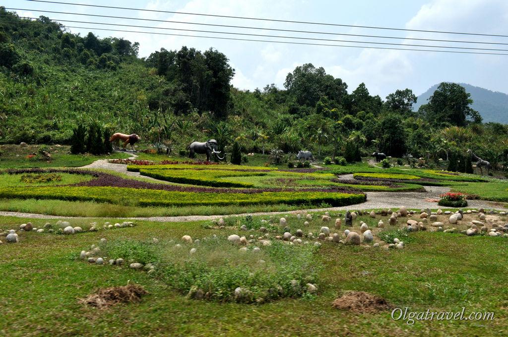На территории парка Янг Бей