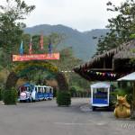 Эко-парк Янг Бей: водопады, горячие источники и не дикие звери!