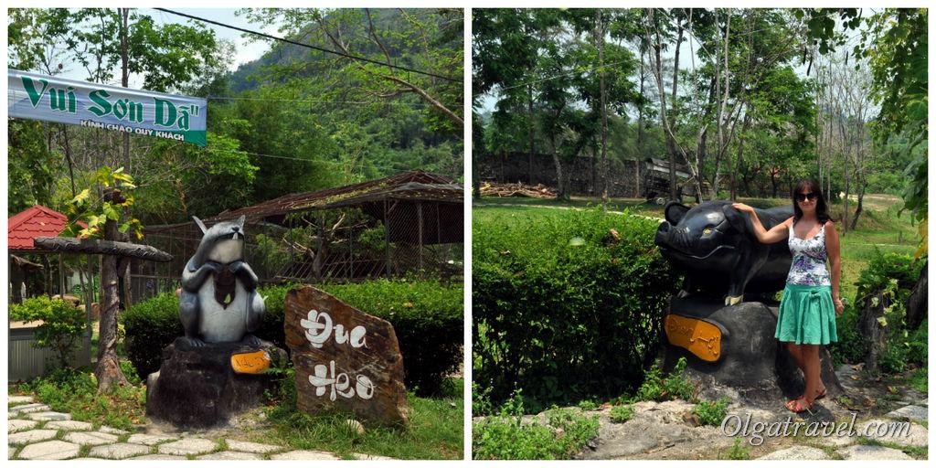 Туристический парк Янг Бей