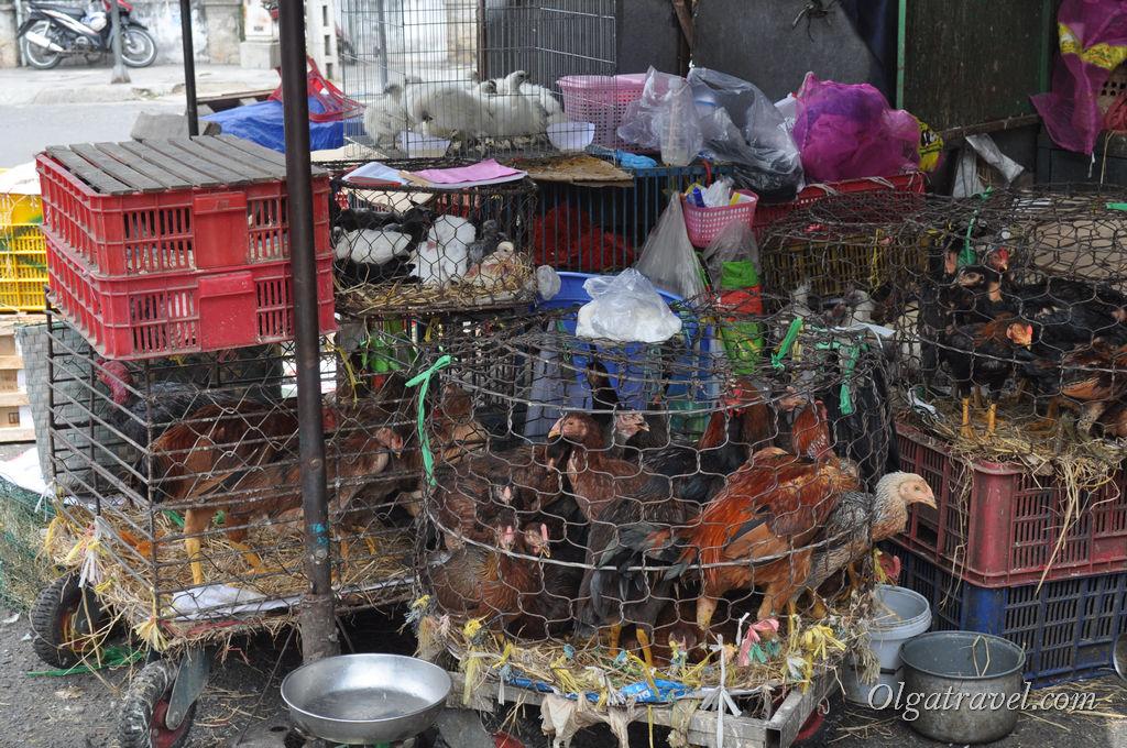 Нячанг рынок Ксом мой