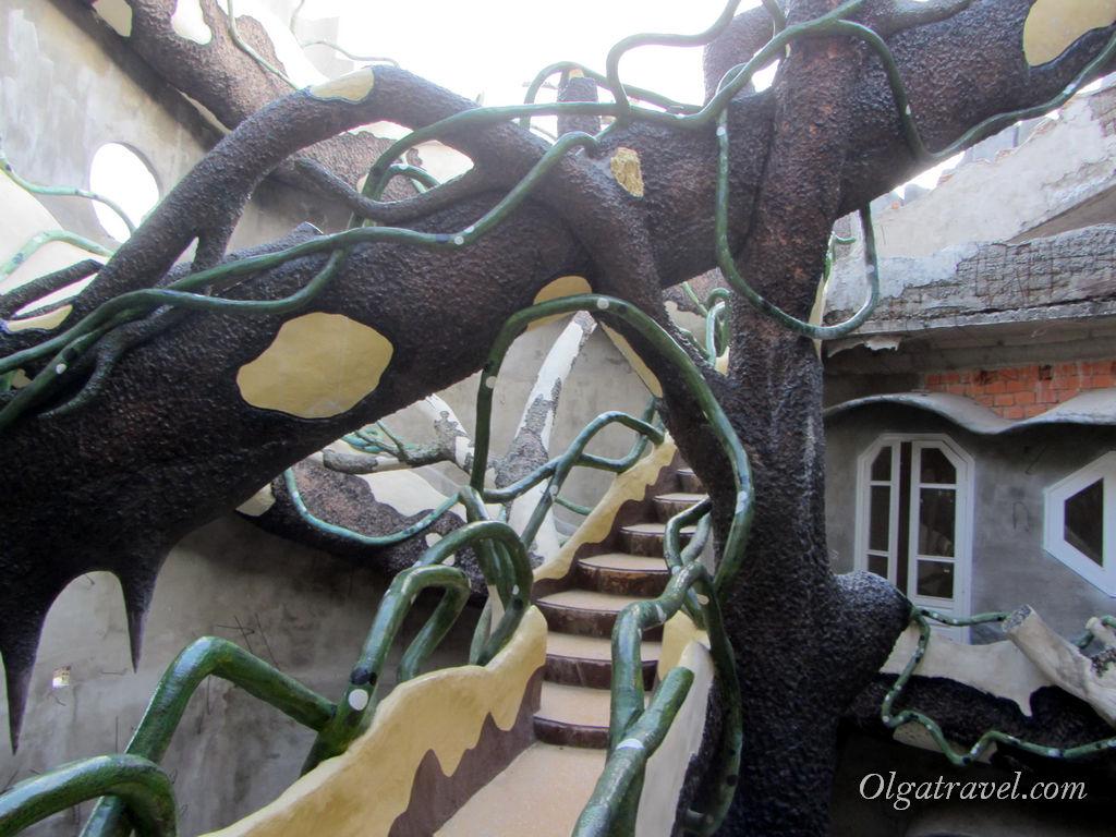 Сумасшедшее переплетение ветвей-лестниц