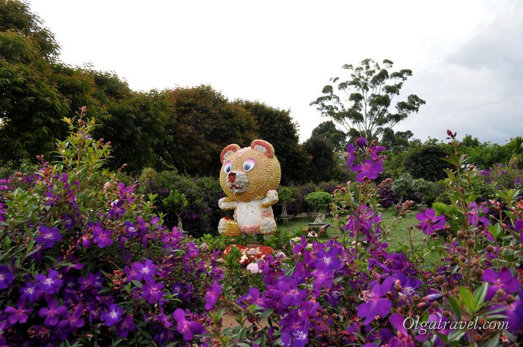 парк цветов Далат