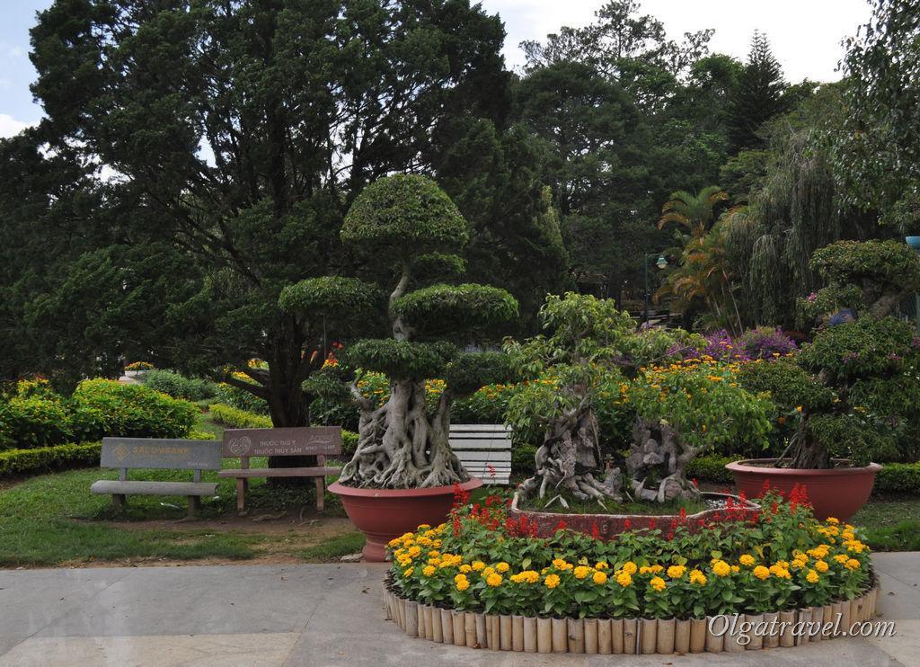 Dalat_flower_park_4
