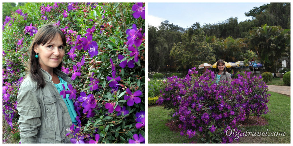 Dalat_flower_park_44