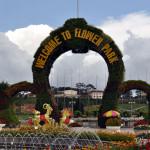 Сад цветов в Далате: полезная информация, отзыв, фото. Симпатичное кафе с видом на озеро рядом с парком