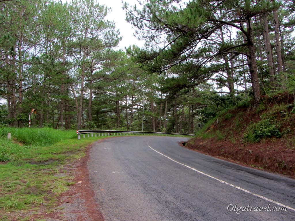 Дорога сквозь лес к из Далата водопаду Датанла