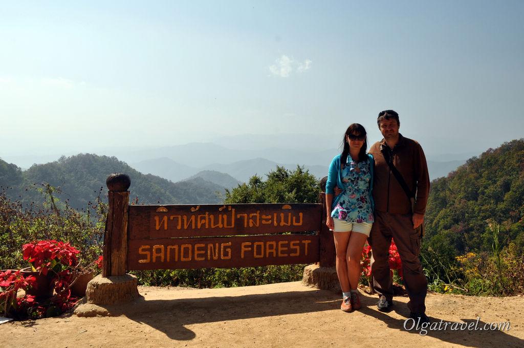 Samoeng_Forest