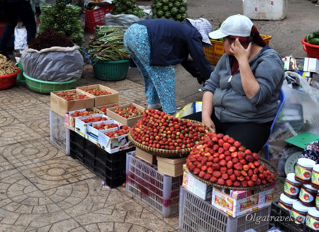 клубника Вьетнам