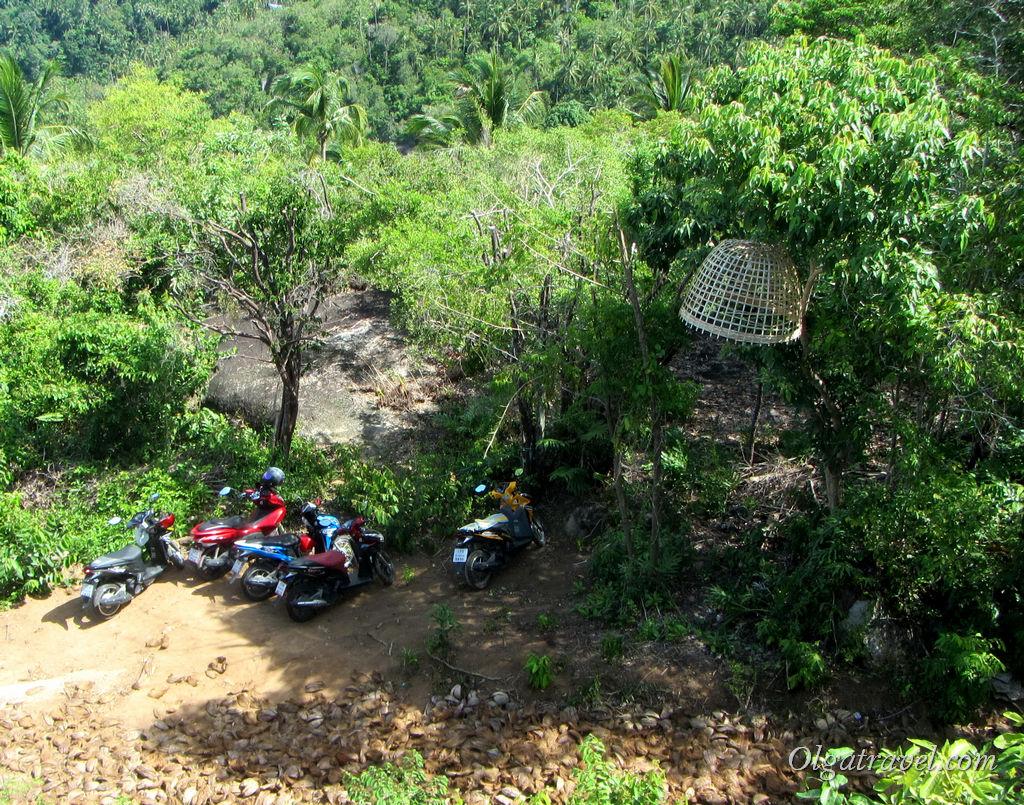 Samui Camp